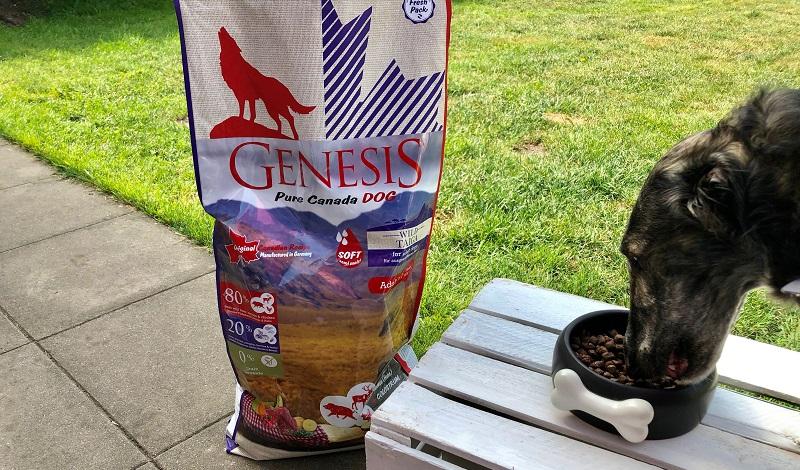 GENESIS Pure Canada WILD TAIGA wird von Barsoihündin Grace getestet.
